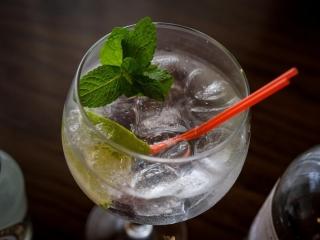 Arklow Bay Hotel - gin
